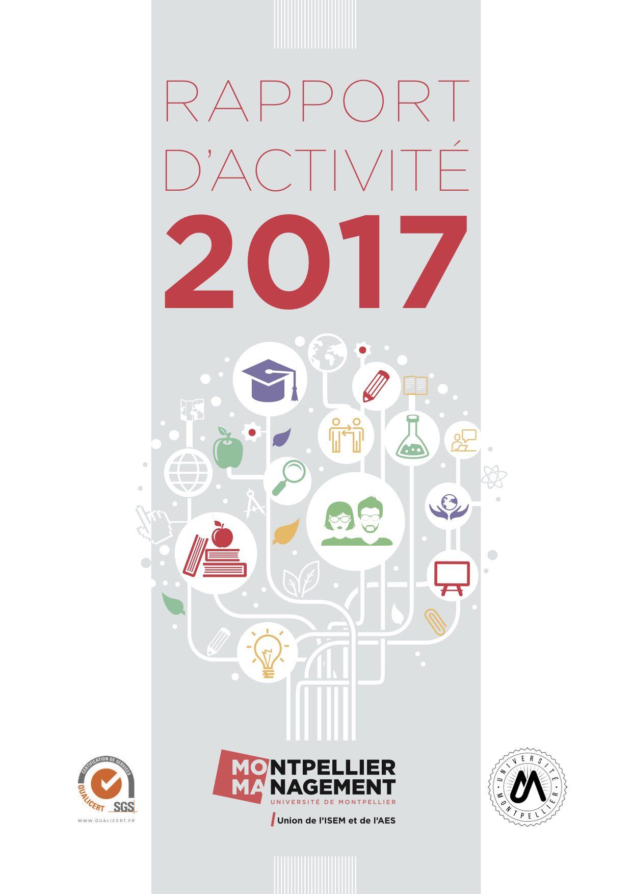 En 2017, pour la 2e année consécutive, Montpellier Management me confie la rédaction de son rapport d'activité (+ de 60 pages). Avec une graphiste, nous travaillons à un rendu plus dynamique grâce à de la datavisualisation (représentation des données de façon visuelle).